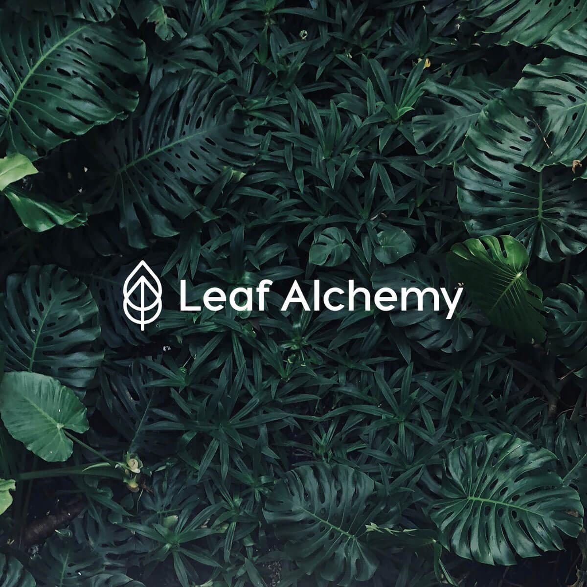 LeafAlchemy4.jpg