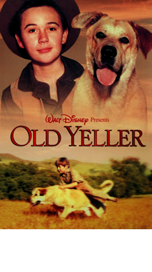 Old-Yeller.png