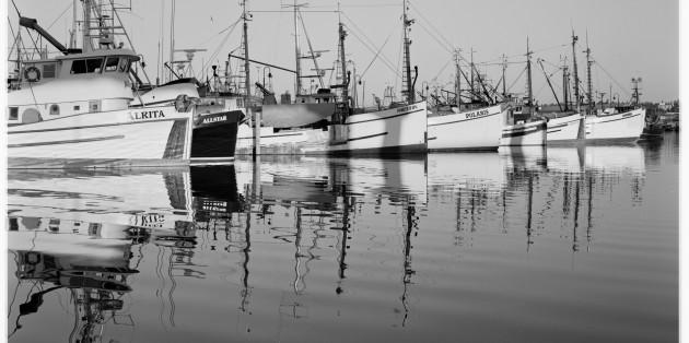boats-2-tmx-630x314.jpg