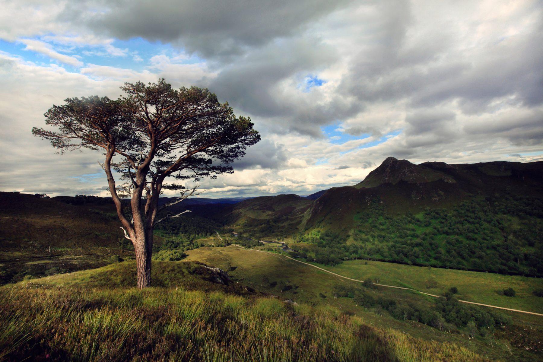 Highland-landscape.jpg