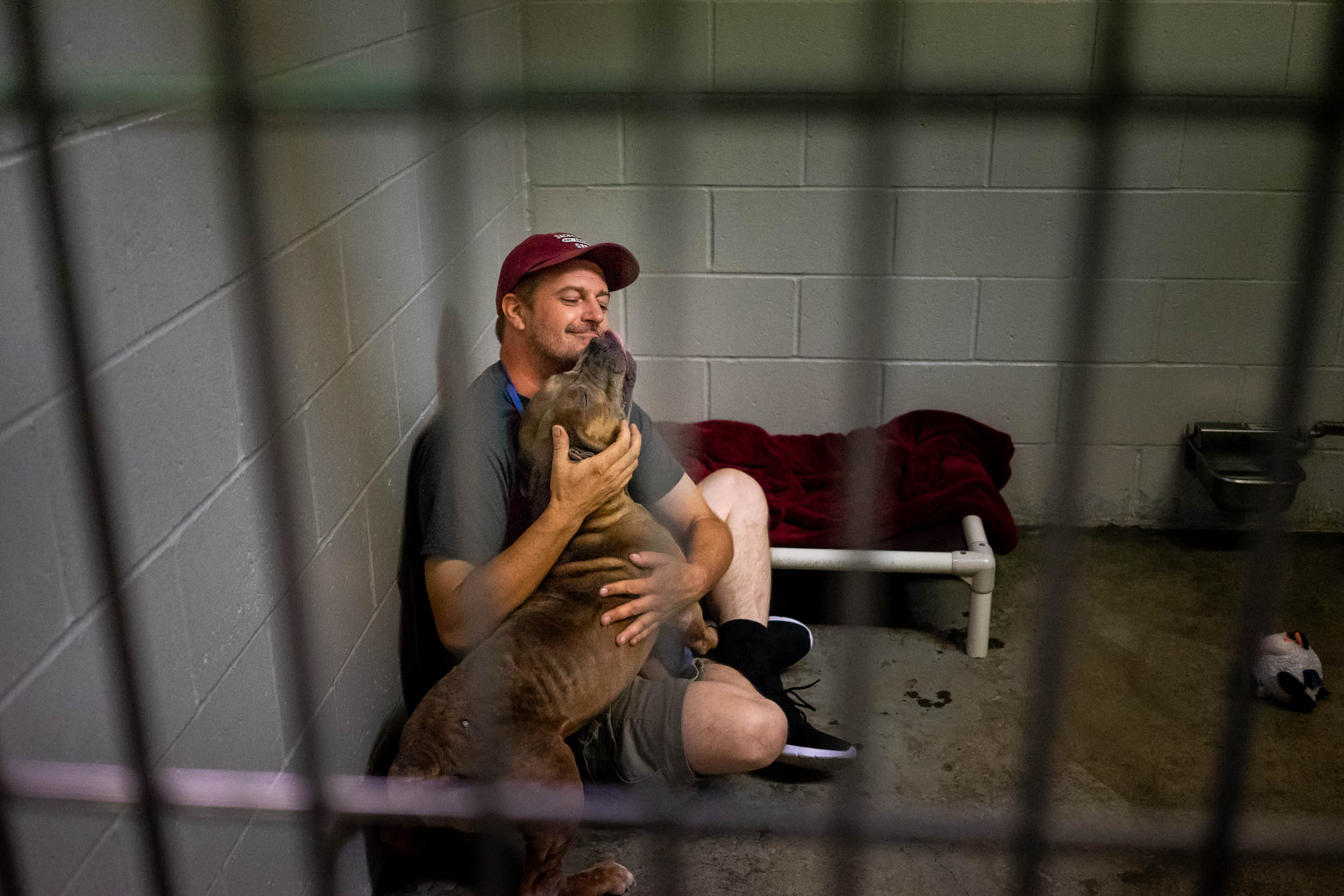 """An SPCA volunteer """"socializing"""" one of the dogs ready for adoption"""