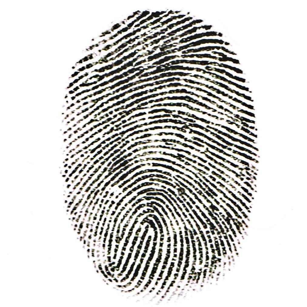 Barnaby_Fingerprint.jpg