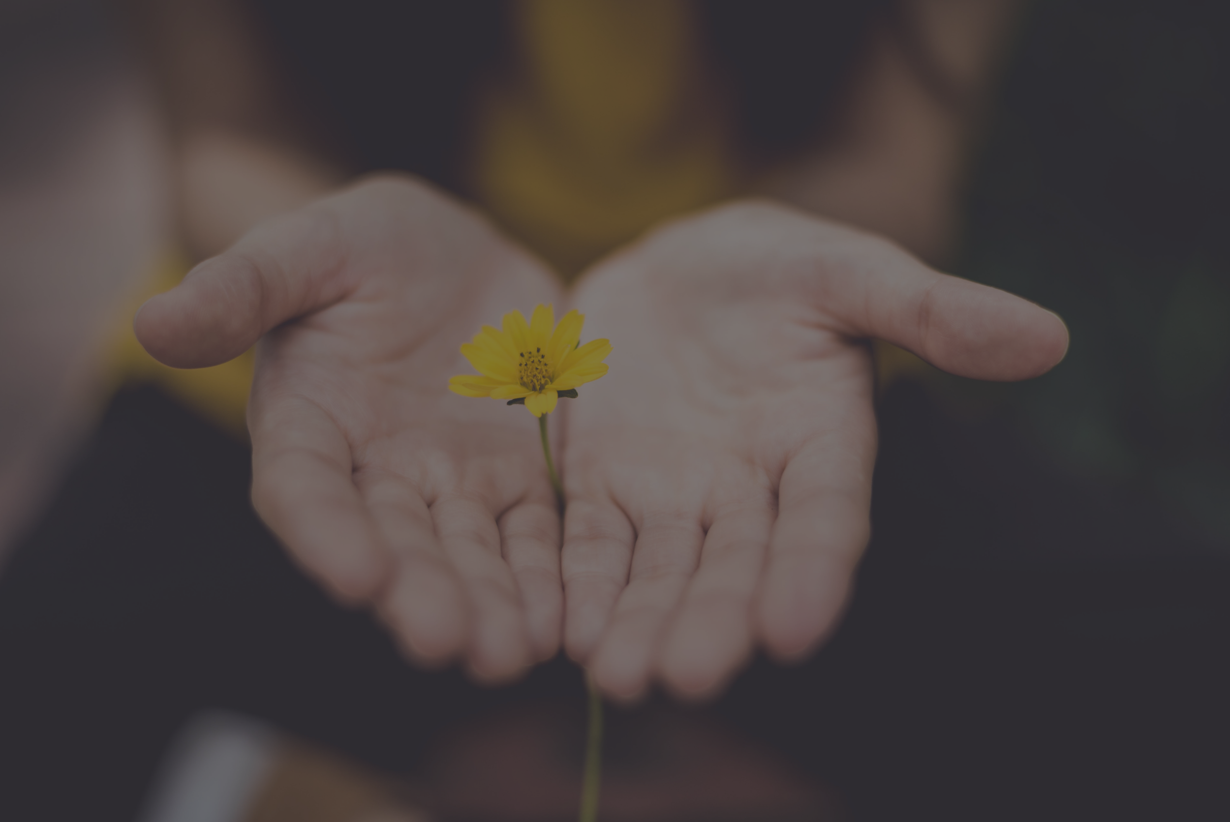From Heartache to Hope - Grief Workshop