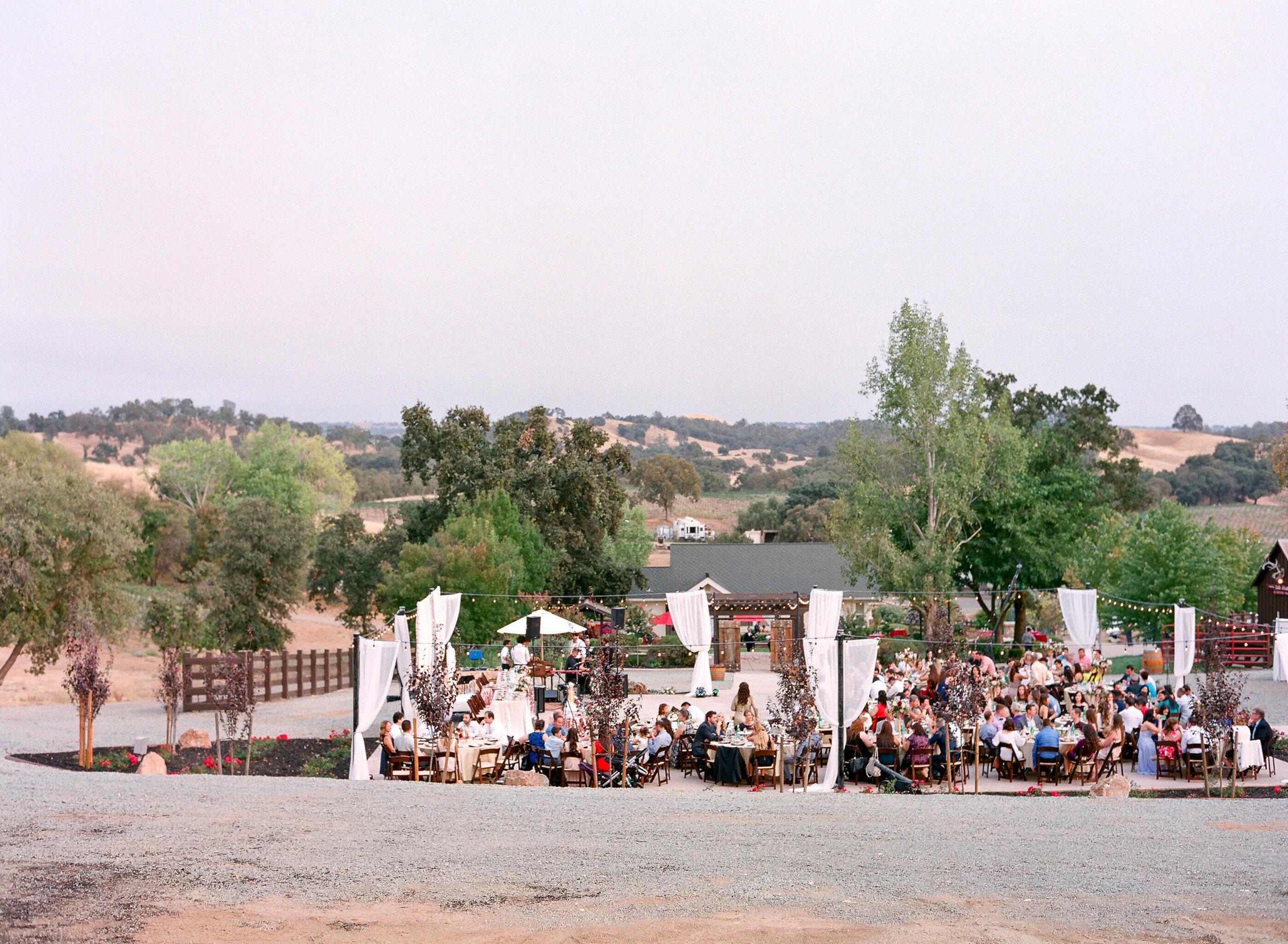 Amador_County_Wedding_Reception_Draping_Lights_Guests_Rancho_Victoria_Vineyard_Northern_California.jpg