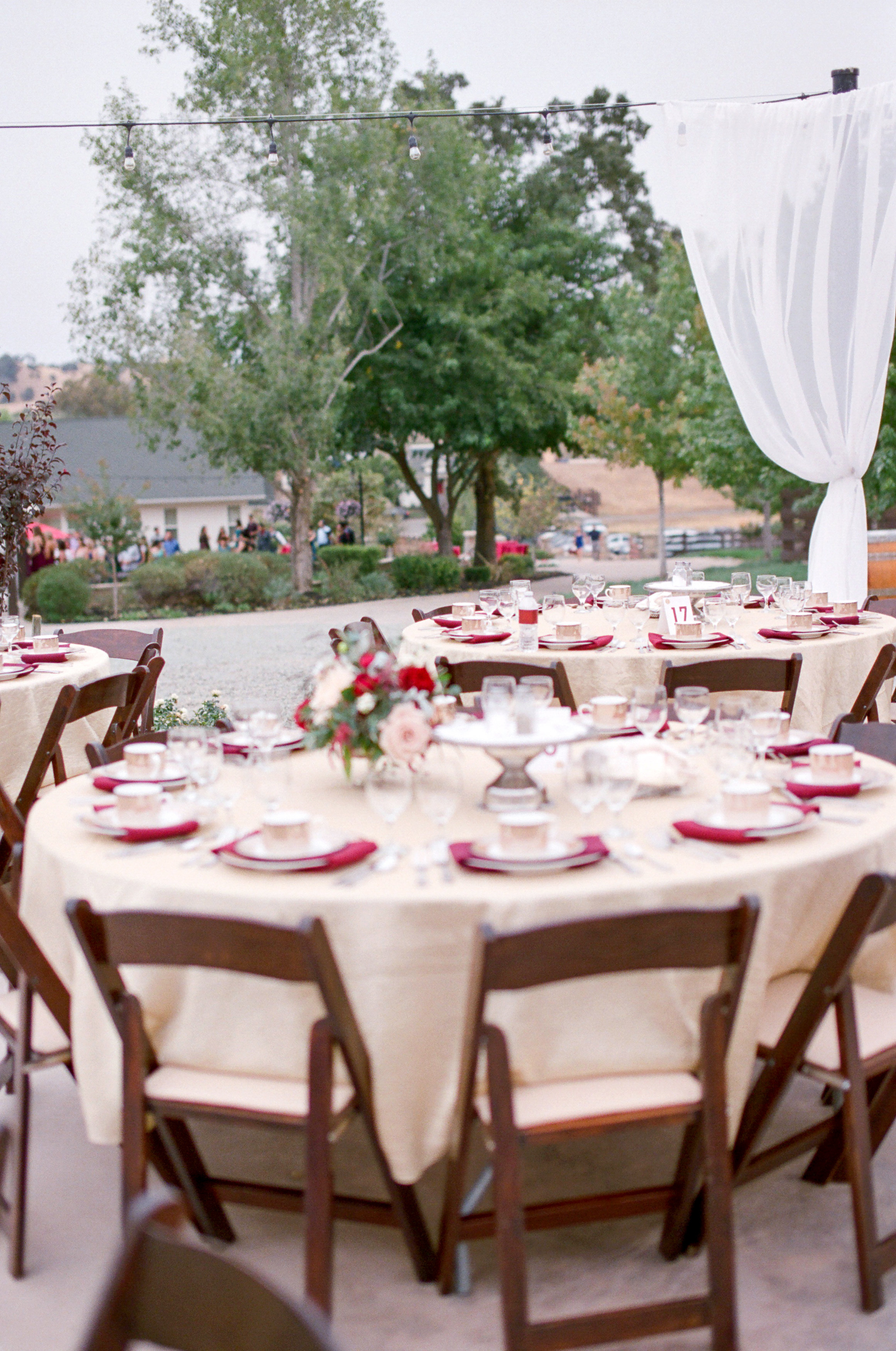 Amador_County_Wedding_Reception_Table_Arrangements_Draping_Lights_Rancho_Victoria_Vineyard_Northern_California.jpg
