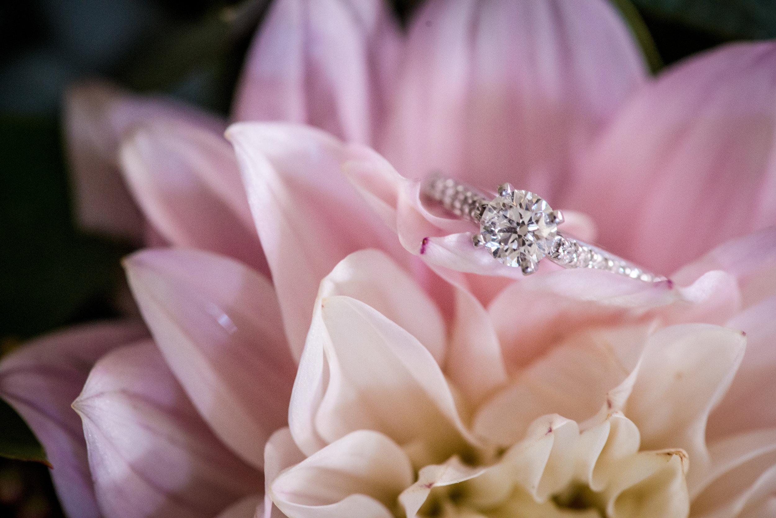 Dahlia_Wedding_Rings_Vizcaya_Sacramento_Violette_Fleurs.jpg