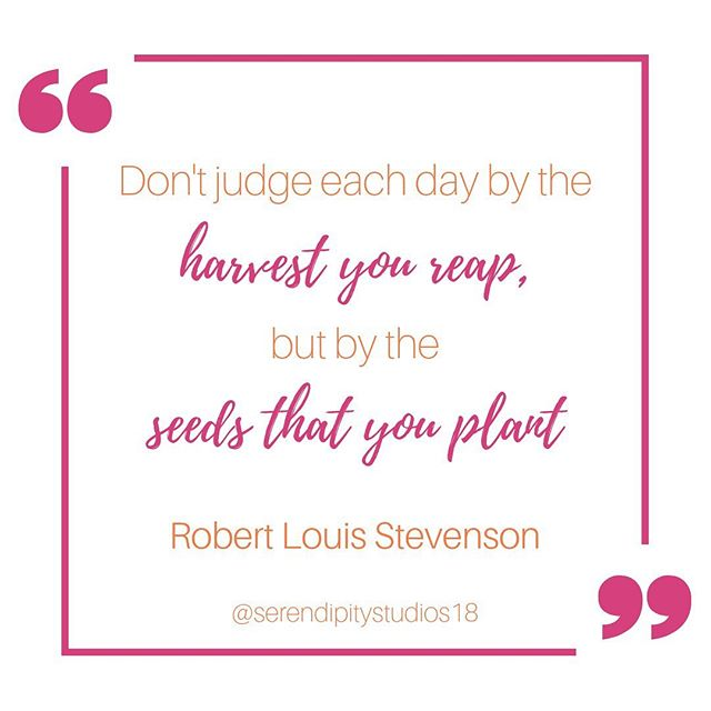 Nothing wrong with getting a jump start though, right? @greenthummum will be bringing fully grown succulents for us to arrange in a pretty terrarium! . Join us for Succulent Terrarium, coming August 21 from 6 to 8 p.m.! . Link in bio. . #instaquote #quotestagram #quotesofinstagram #robertlouisstevenson