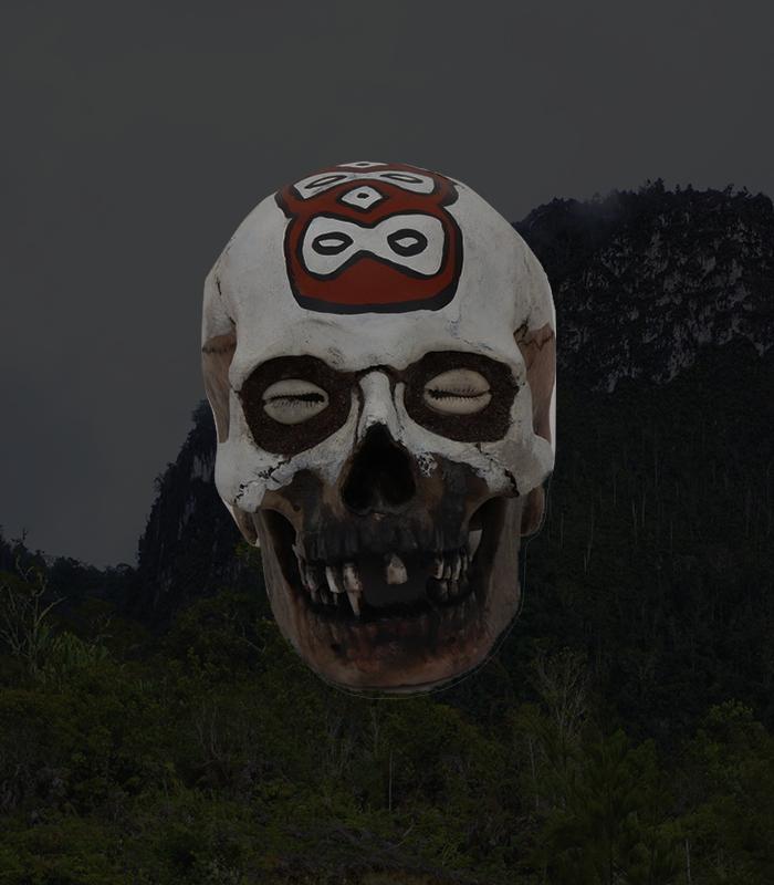 Asmat Skulls - Decorative Ancestor skulls of the head hunter tribe of Papua, New Guinea