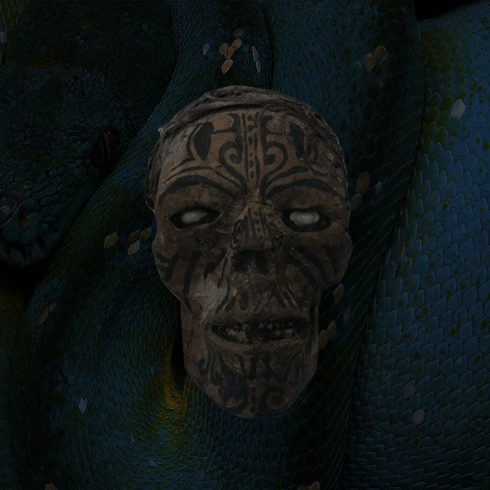 Other Skulls - Skulls from the Ifugao tribe, shrunken heads, Mokomaki heads, and specialty animal skulls