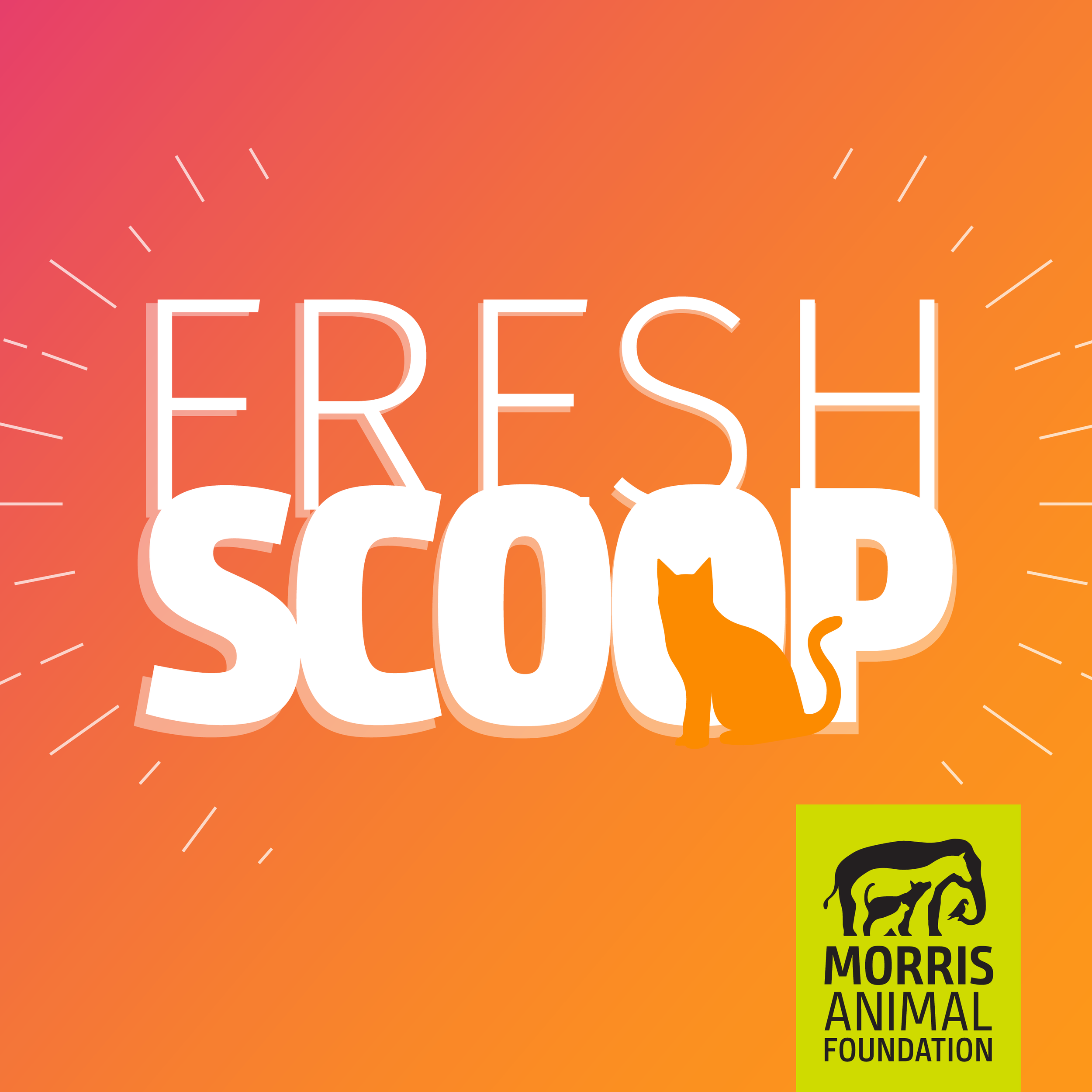 Fresh Scoop, by Morris Animal Foundation