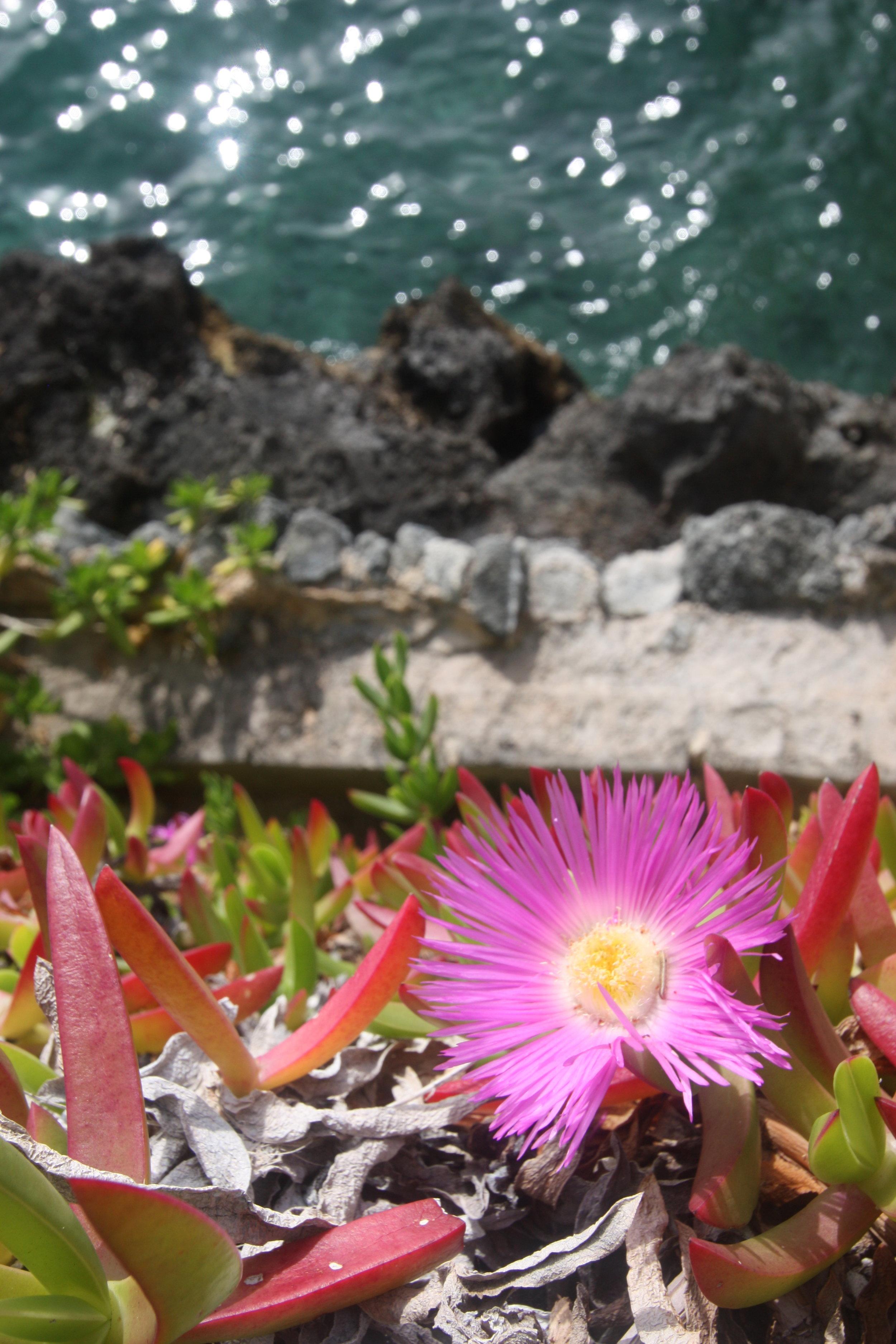 Harrington Sound, Bermuda