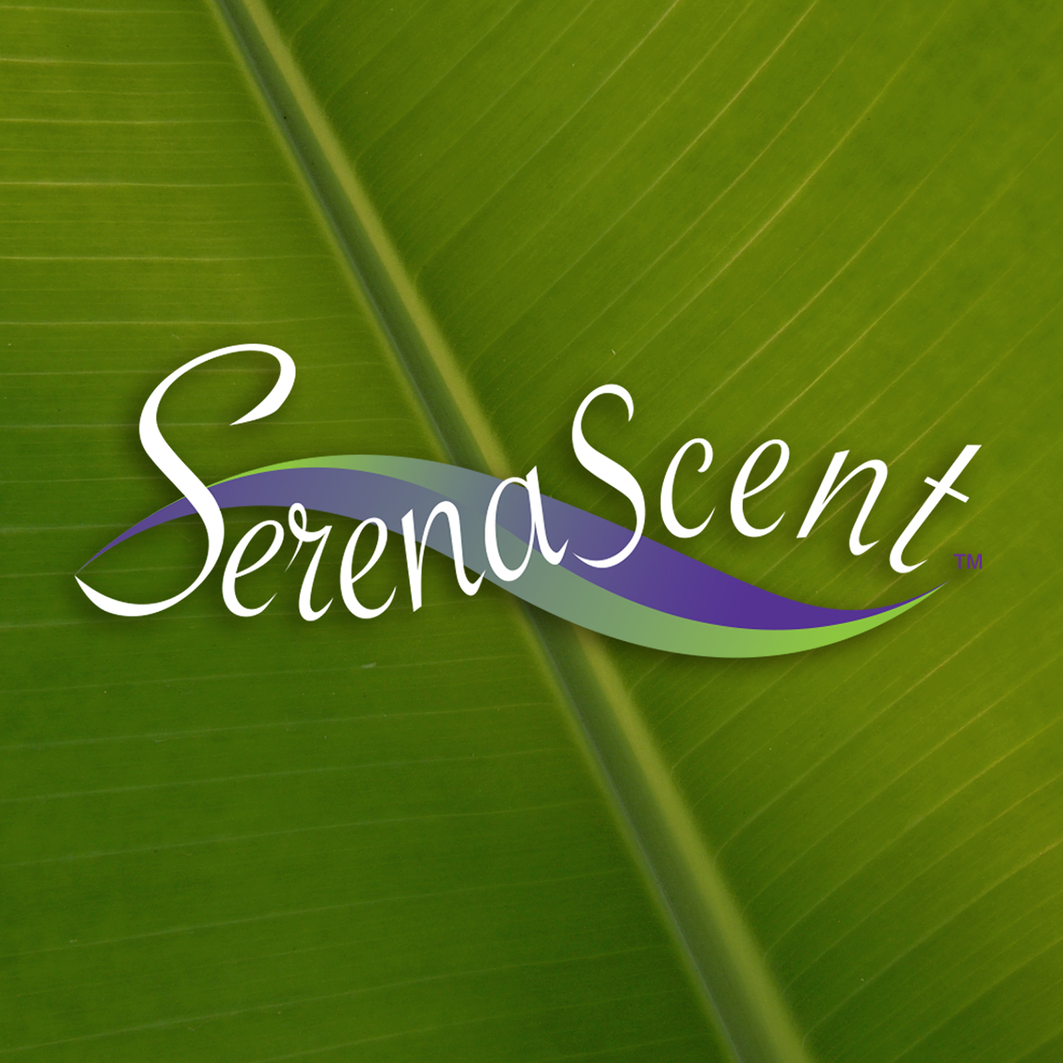 Serena Scent - Refresh & Calm