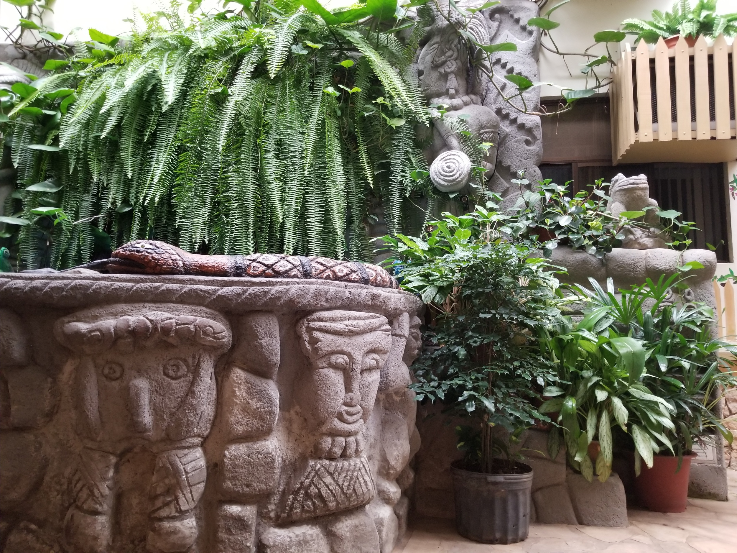 A little of the indoor garden