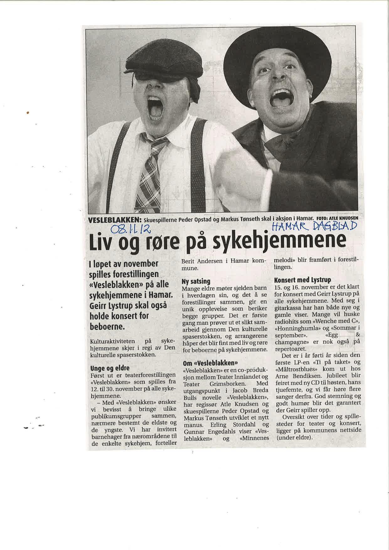 Nov 08 2012 Hamar Dagblad.jpg