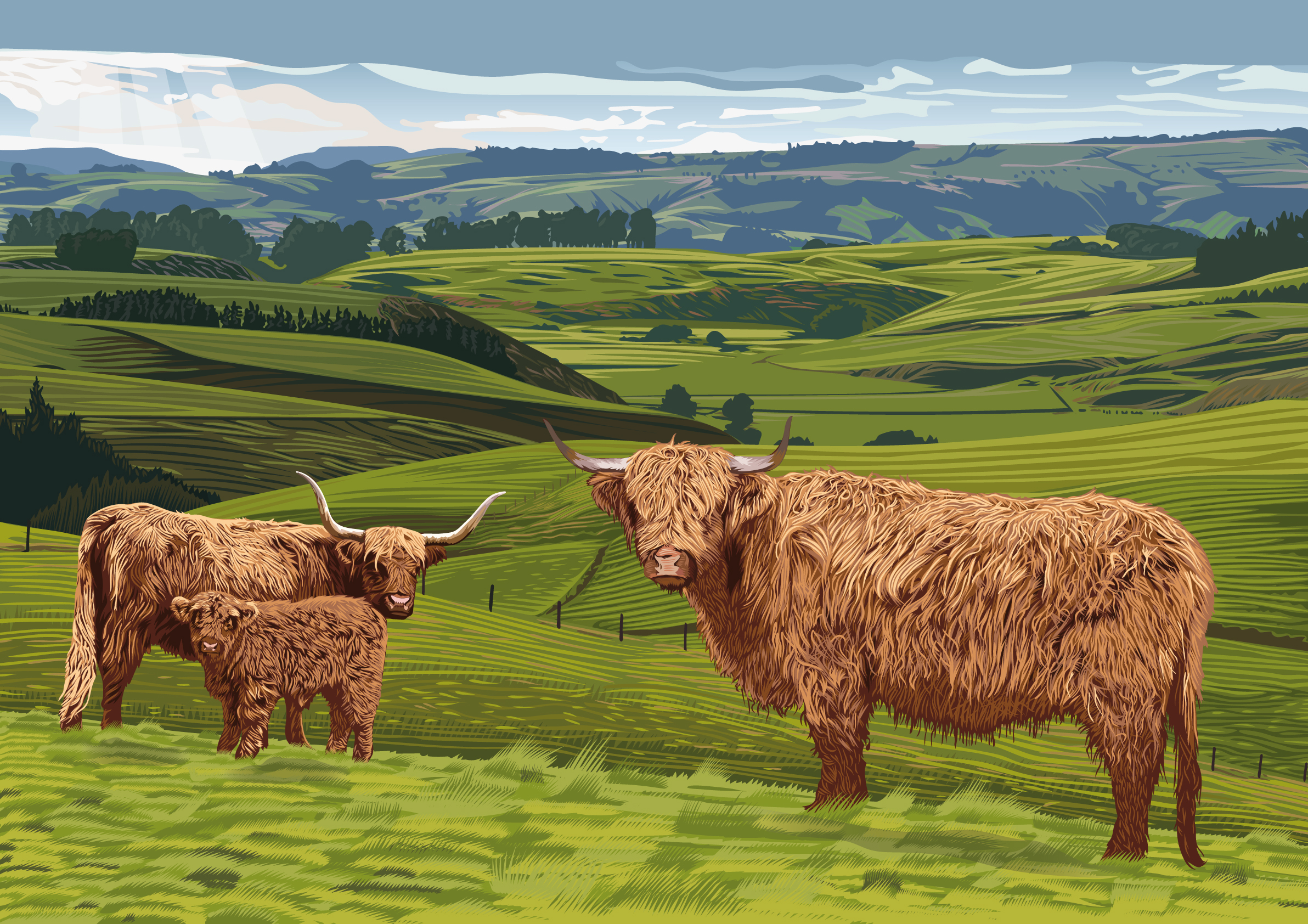 Highland-Cattle-Piece-fresh.jpg