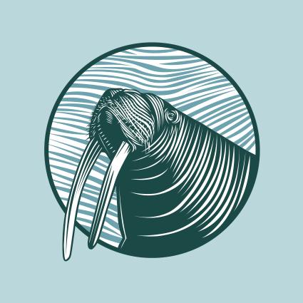 walrus.jpg
