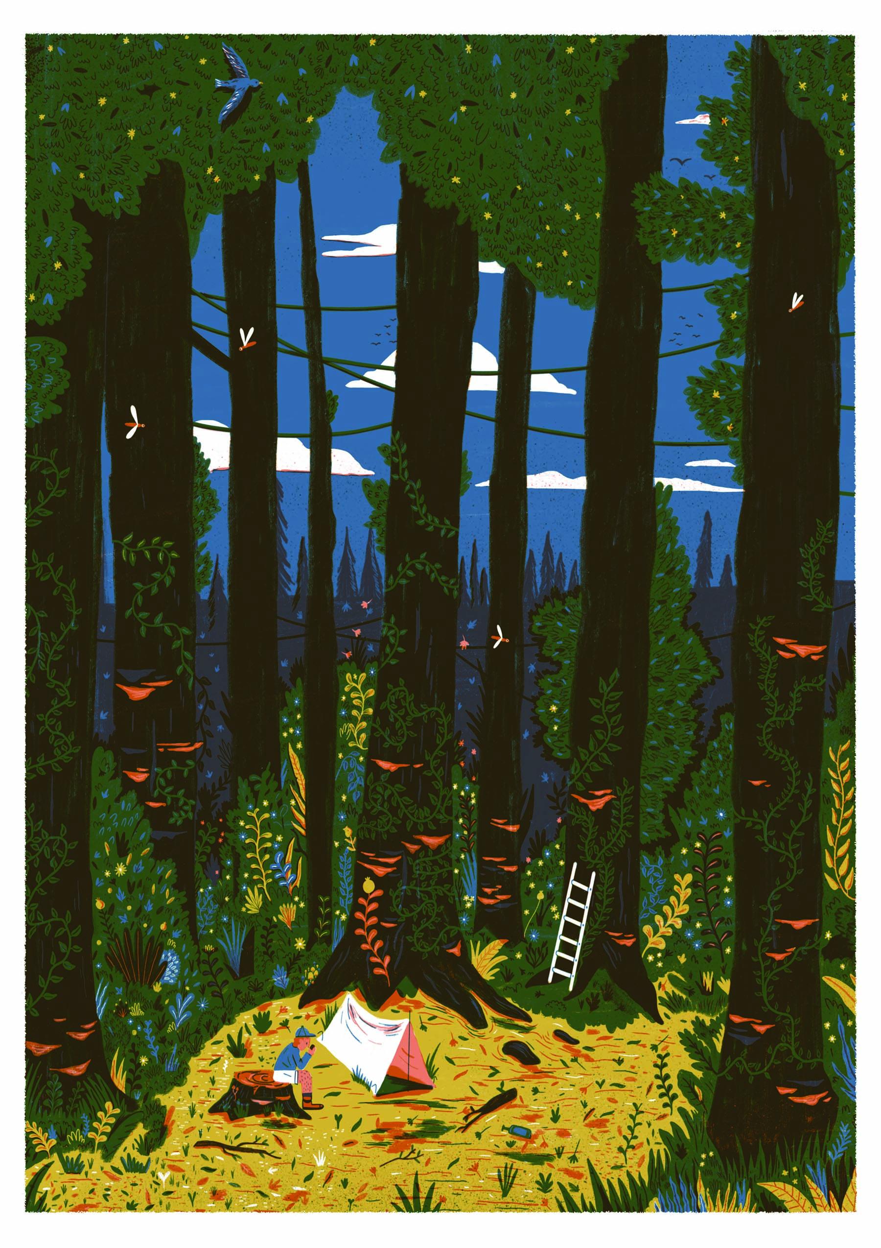 Loveblood Creative - Sonny Ross - Forest.jpg