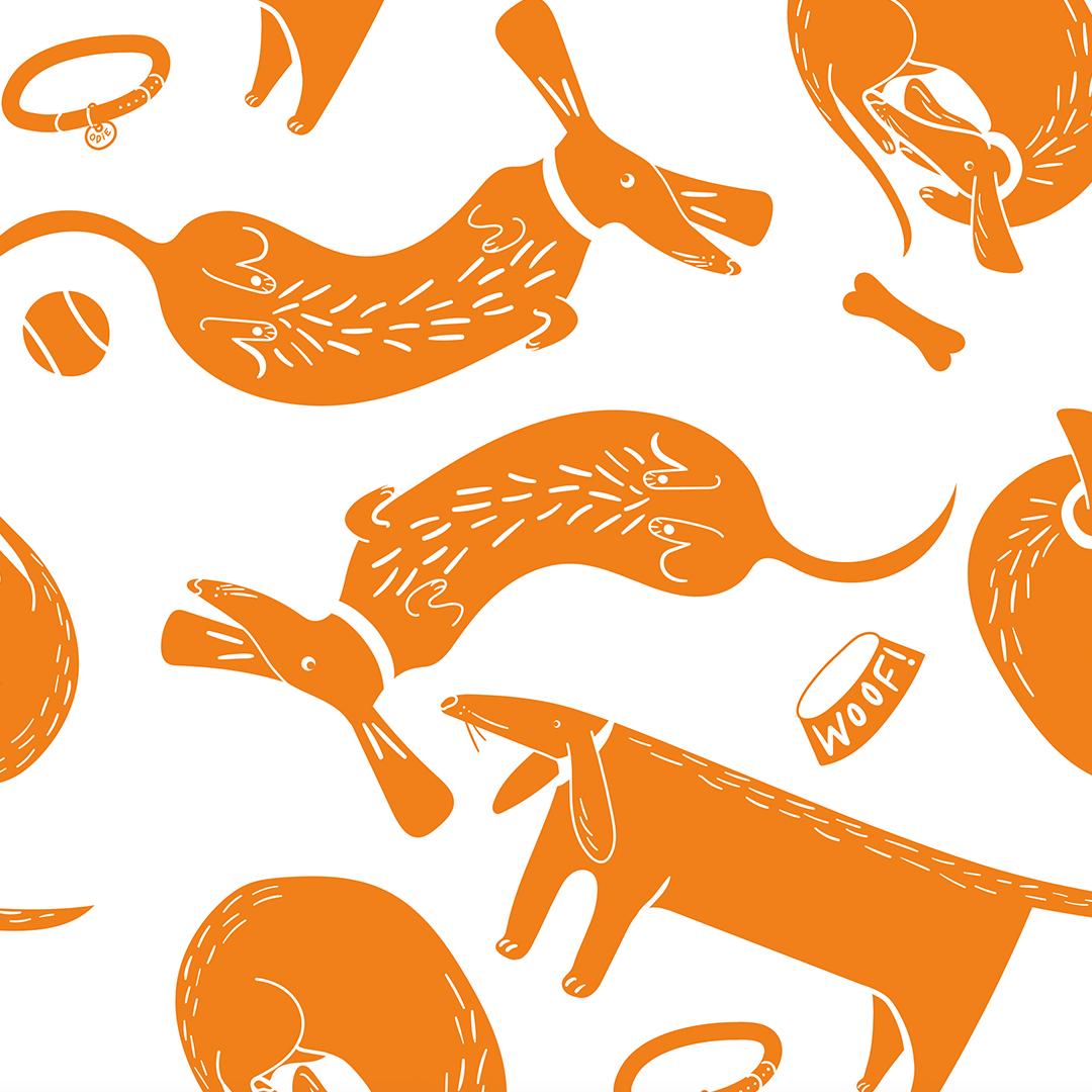 sausage-dogs.jpg