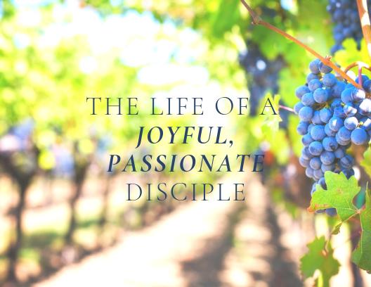 Joyful, Passionate Disciple FINAL.png