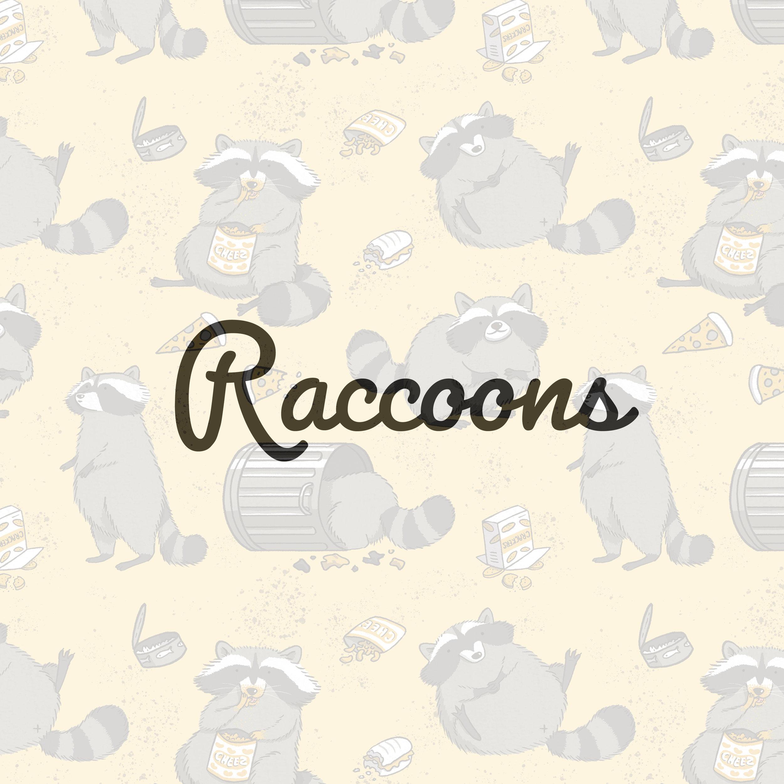 Raccoons_square.jpg