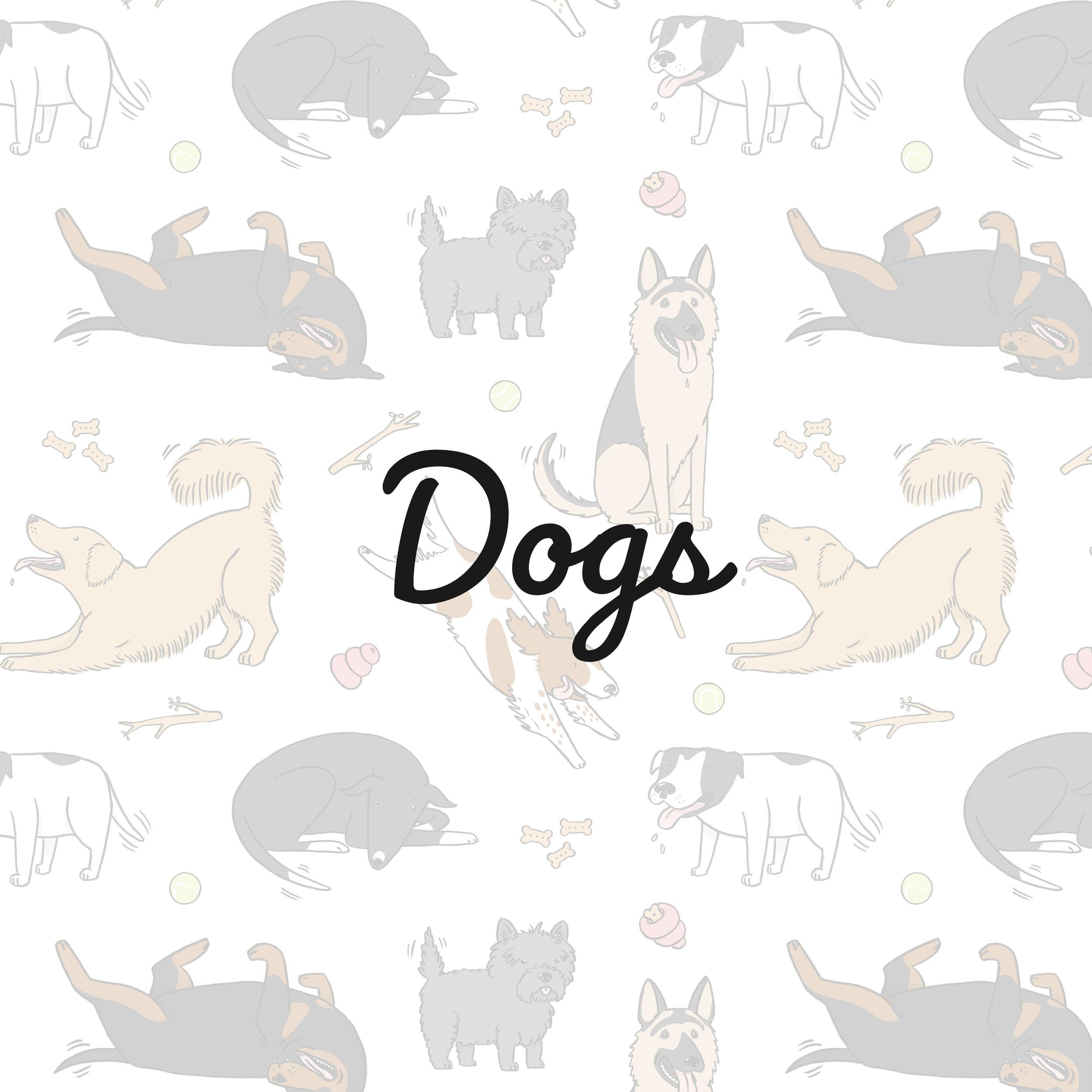 Dogs_square.jpg
