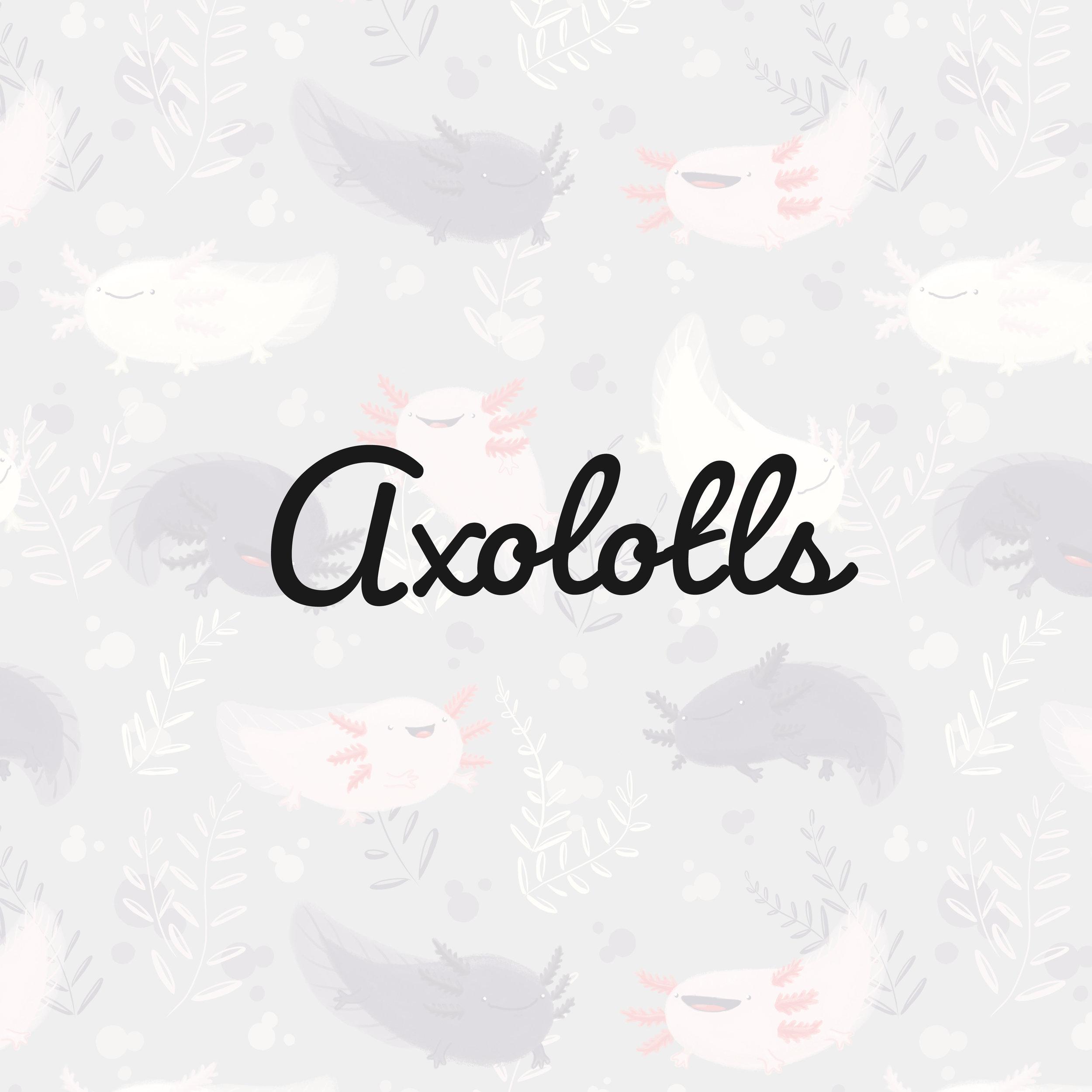 Axolotls_square.jpg
