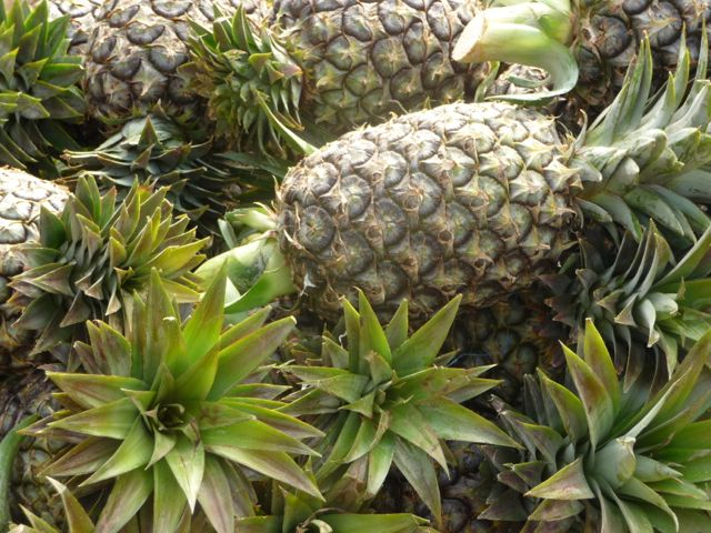 pineapple-laos market.jpg