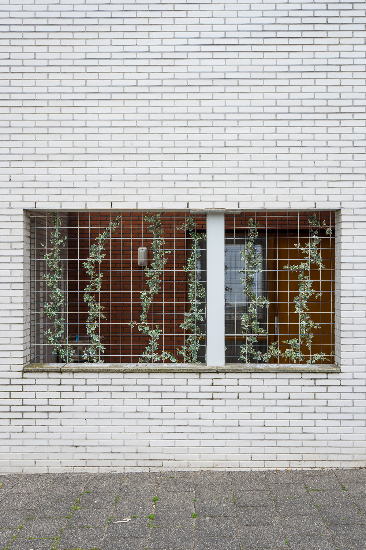 rowhouse-behind-bars-07650.jpg