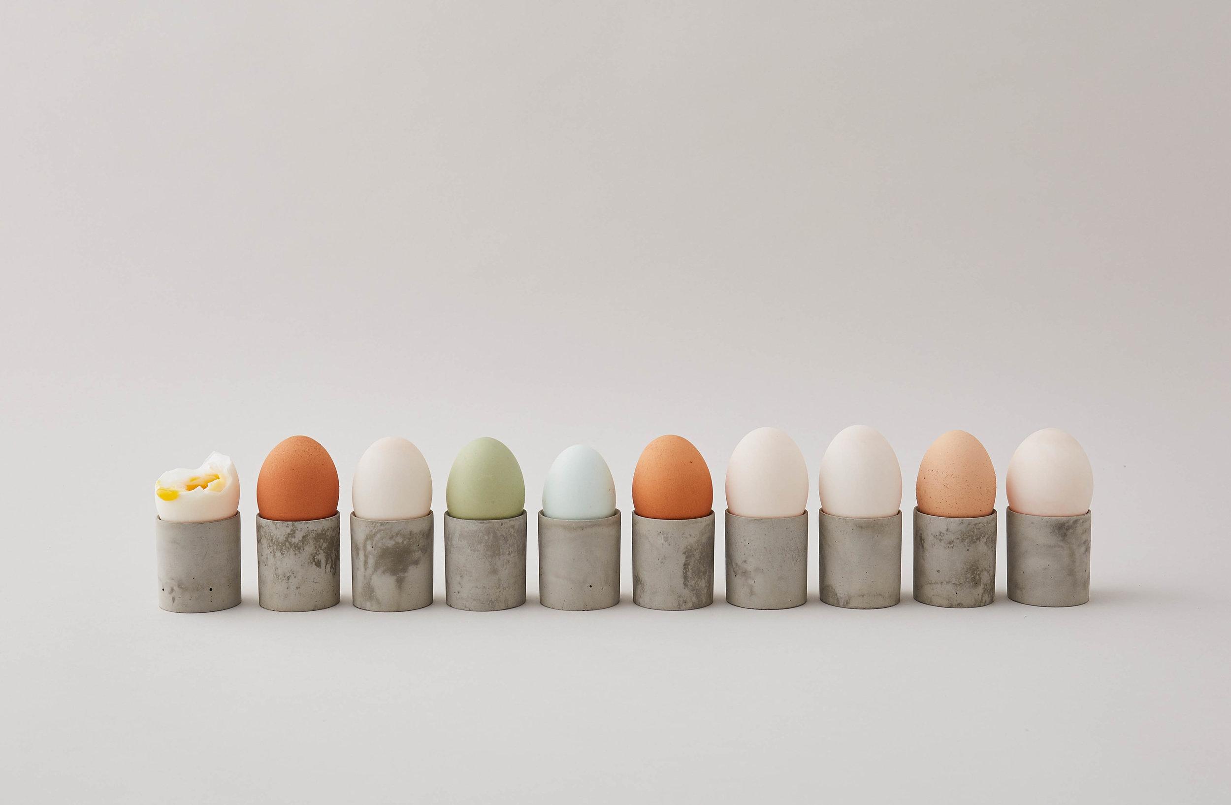 egg line.jpg