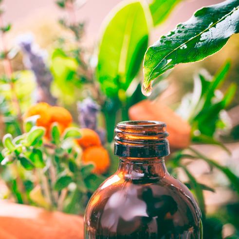 Horvi-Enzym-Therapie