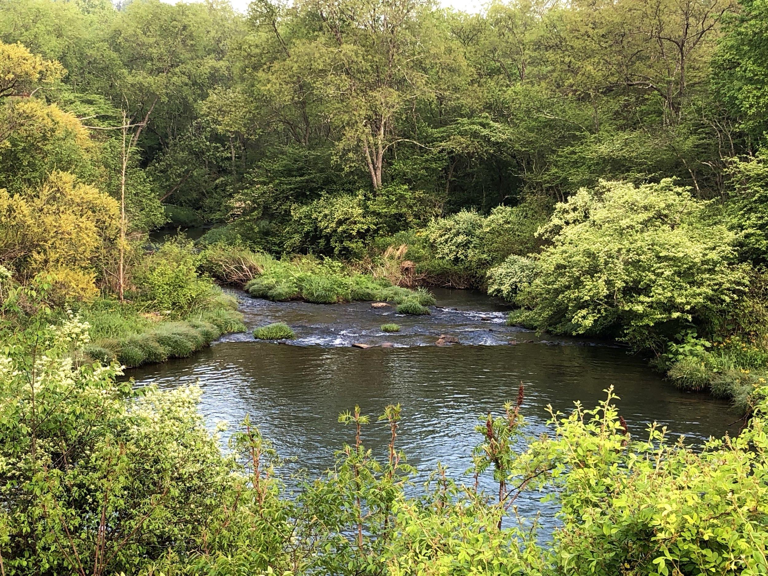 Piney Creek runs through the campground