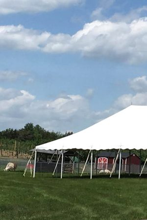 Rent our Tent - Our tent is perfect for a child's birthday party. It is located right next to the Petting Zoo and playground.Need a space for your next family reunion? The tent can accommodate up to 75 guestsLooking for an outside business space to unplug? Let us put together a custom breakfast for you!For more information on our birthday packages or to simply inquire:Email: diane@loveapplefarm.com