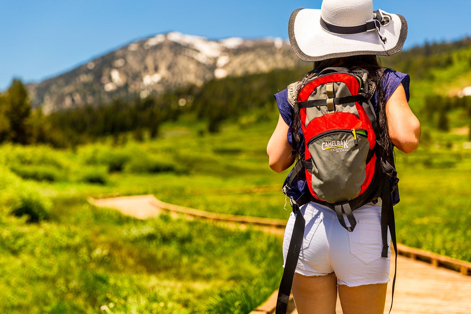 Come-to-Tahoe-Meadows.jpg