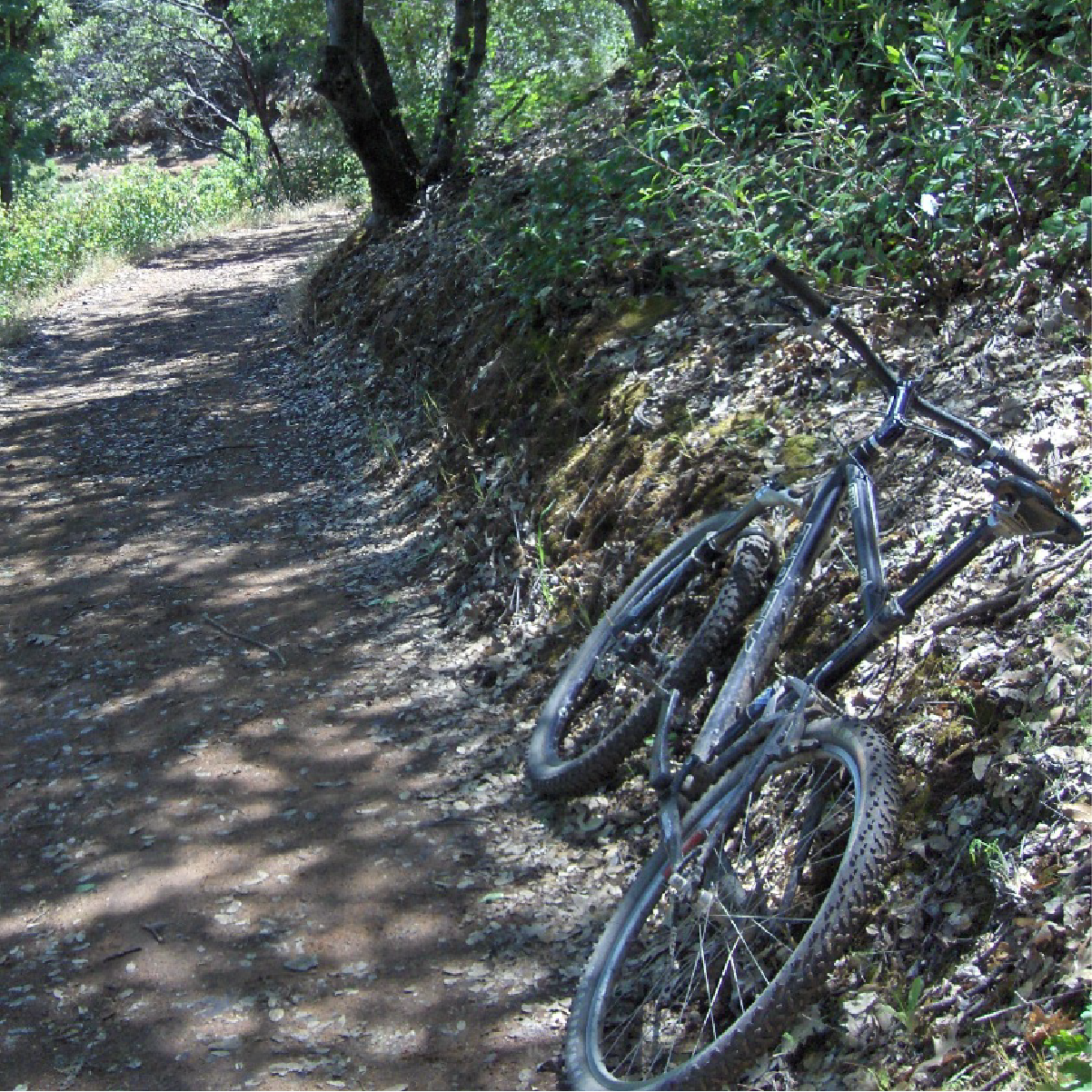 BICYCLIST -