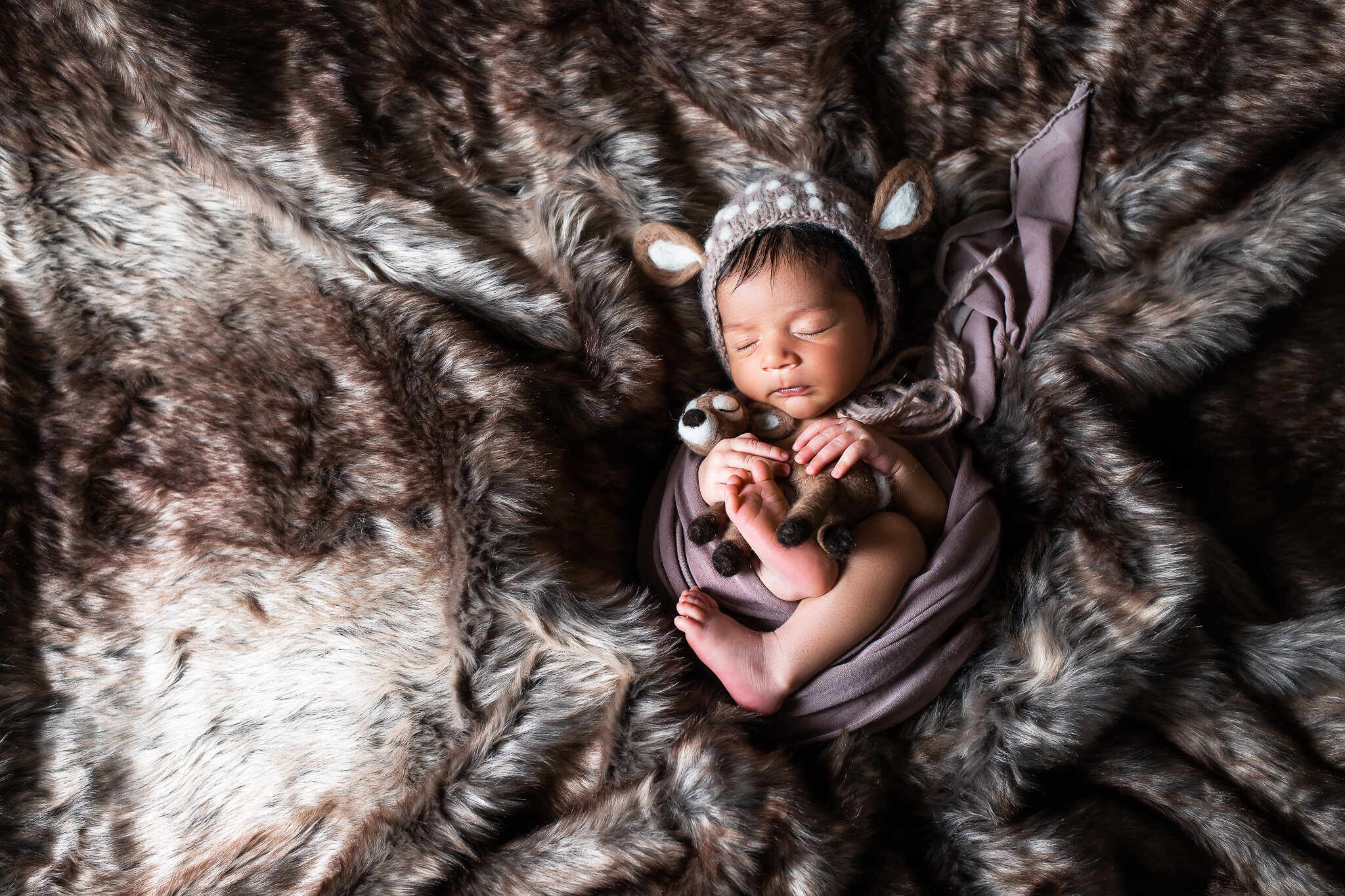Baby Fawn, curled up in fur