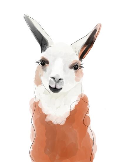 minted llama.jpg