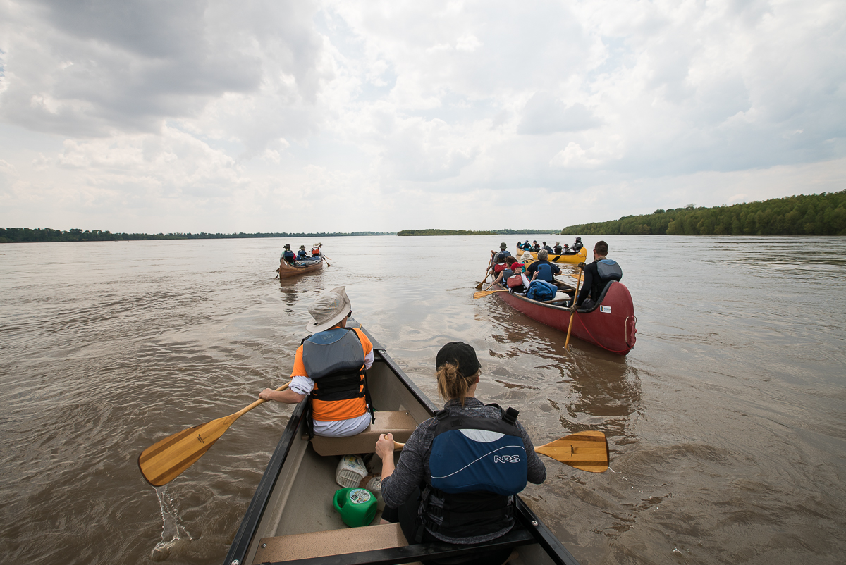 Four voyageur canoes transport 22 passengers on the largest and most widely attended portion of the Rivergator Celebratory Expedition, the group is seen here departing the launch at Helena, Arkansas, in April 2017. (Photo by Chris Battaglia)