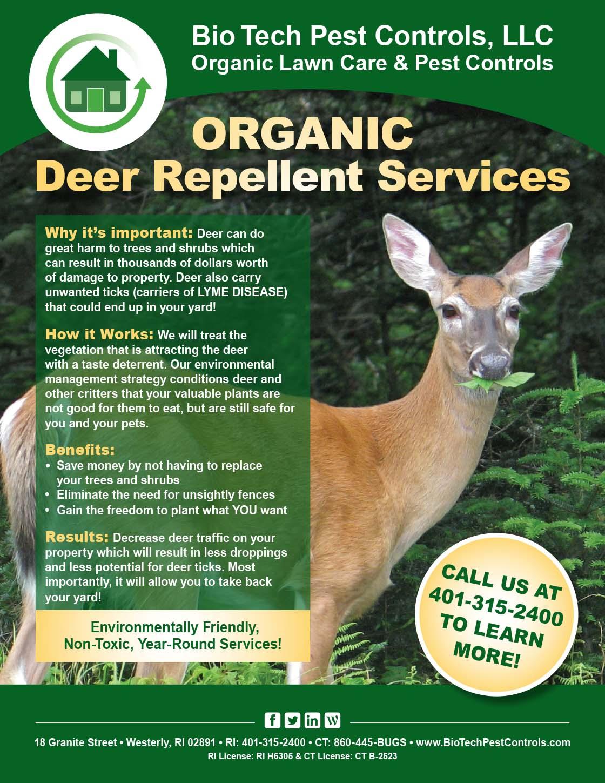 Deer_Flyer.jpg