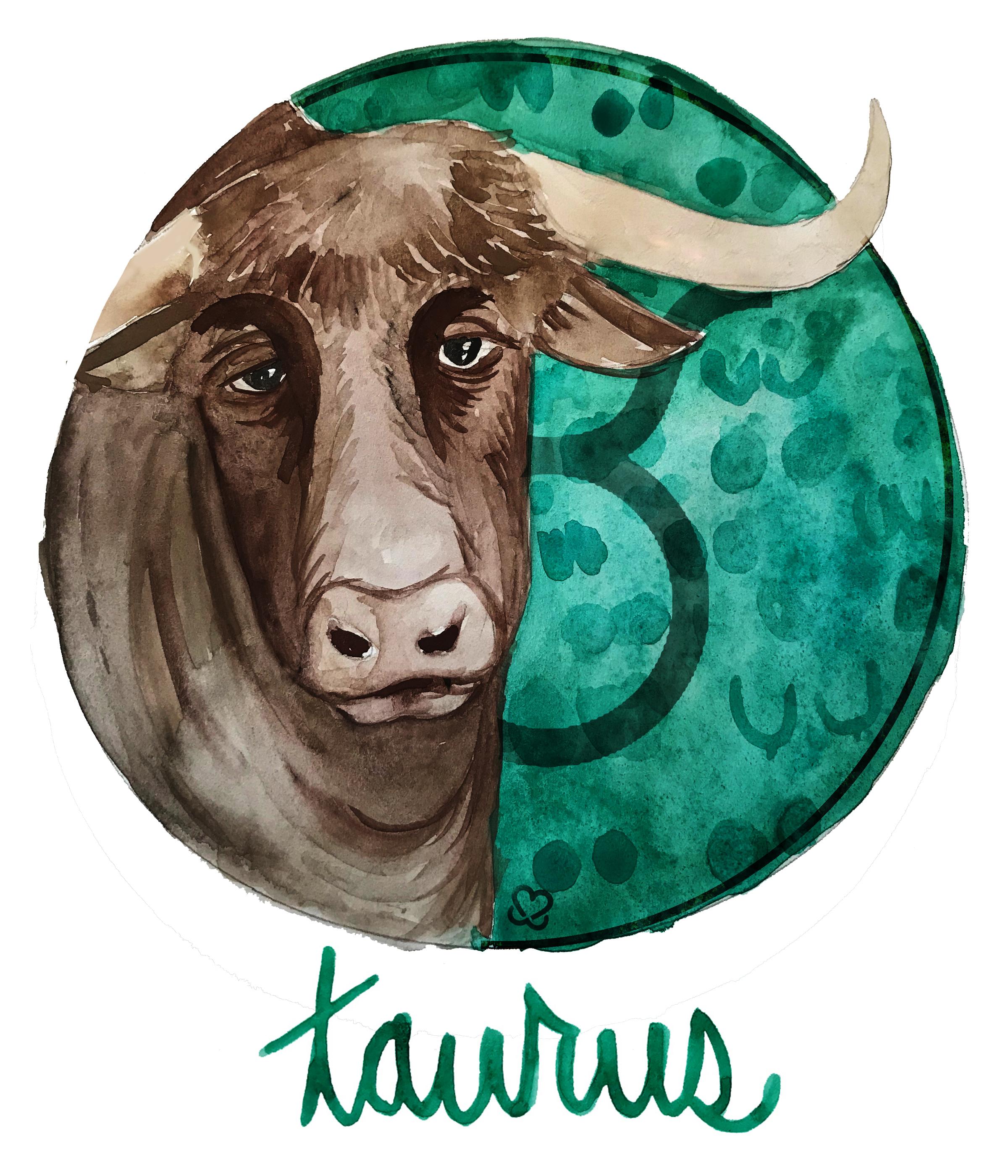 KAB-Breastscopes-Taurus-1-1.jpg