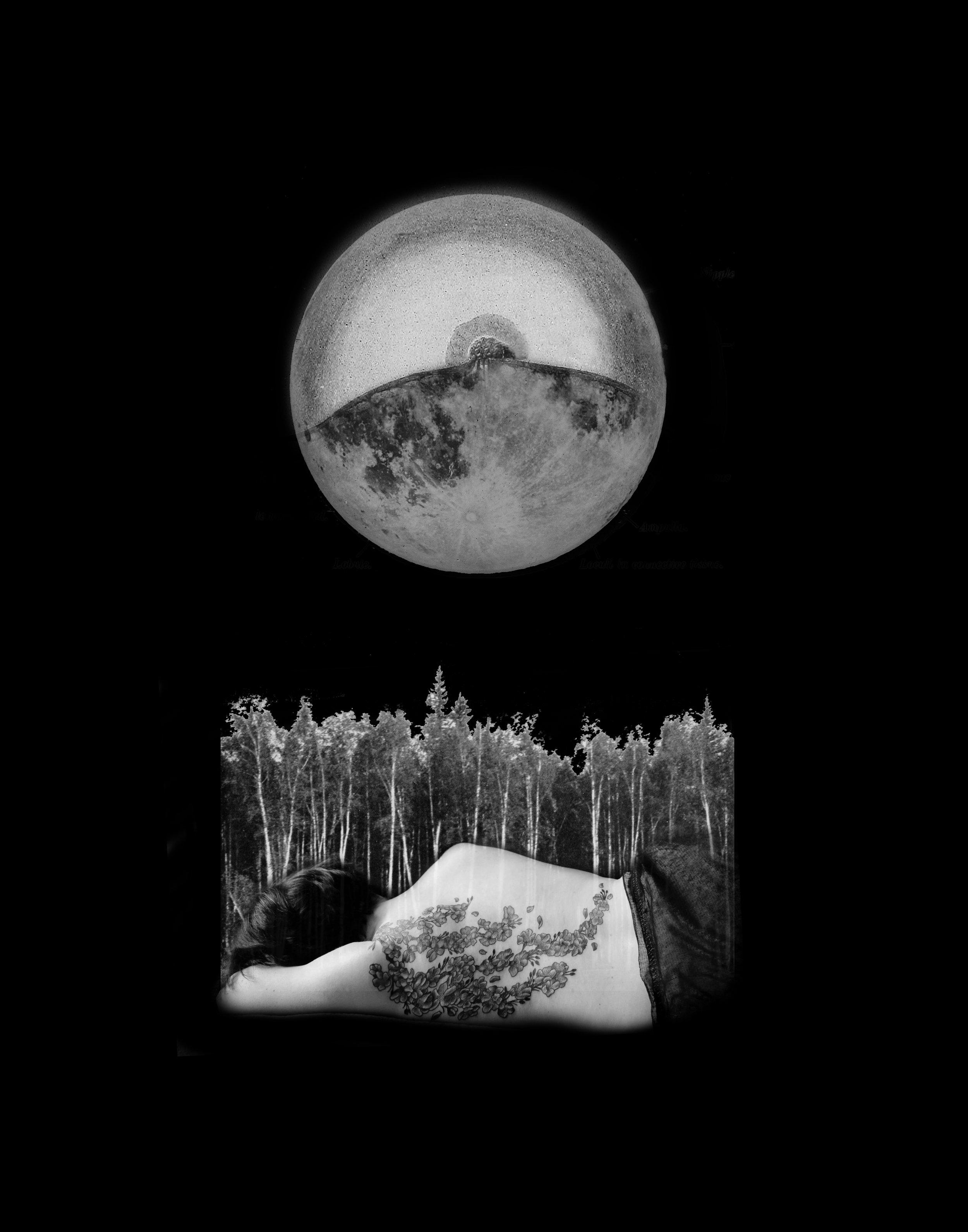 harvest moon selfie.jpg