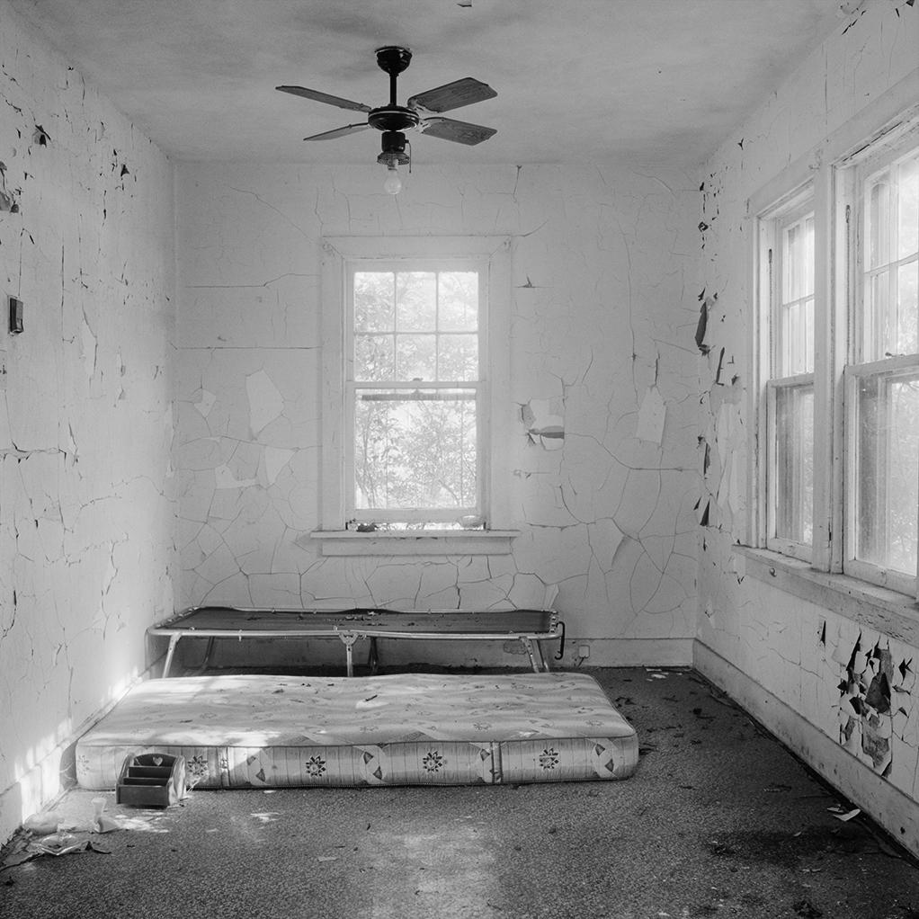 Yellow Dog Bedroom_by_Julie_Herman.jpg