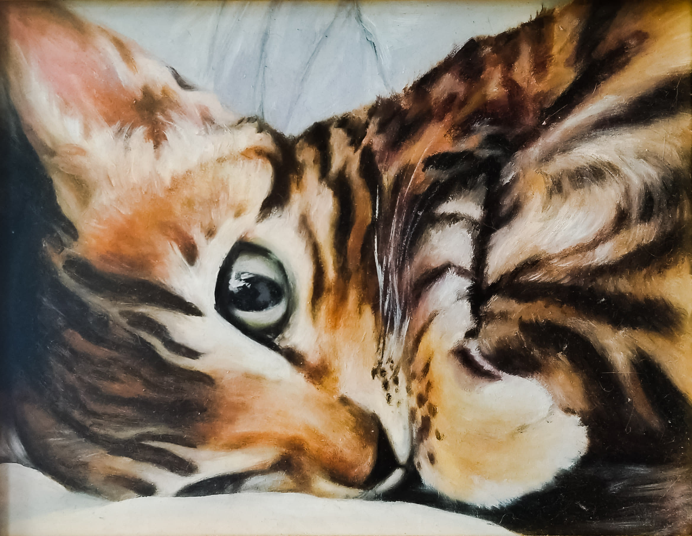 Simba   oil paints on illustration board  Pet portrait of kitten   © Copyright Camille Codling 2019