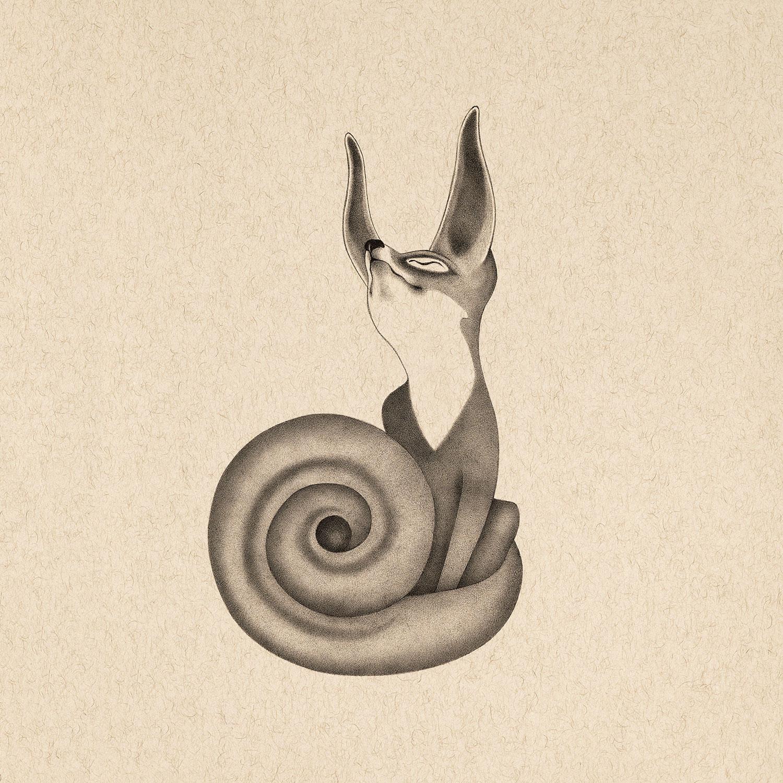 fox14.jpg