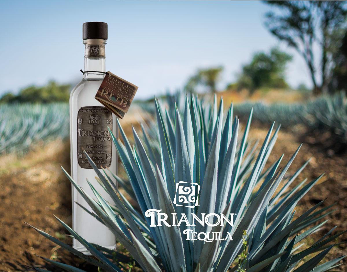 trianon-bottles-3.jpg