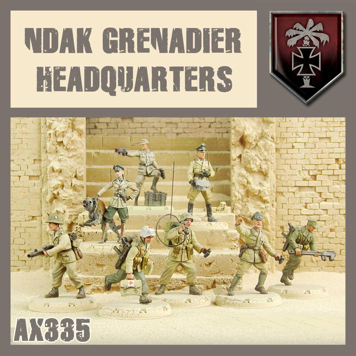 Tina & Hyane, Panzermeister and Desert Fox, along with a full NDAK Command Squad.
