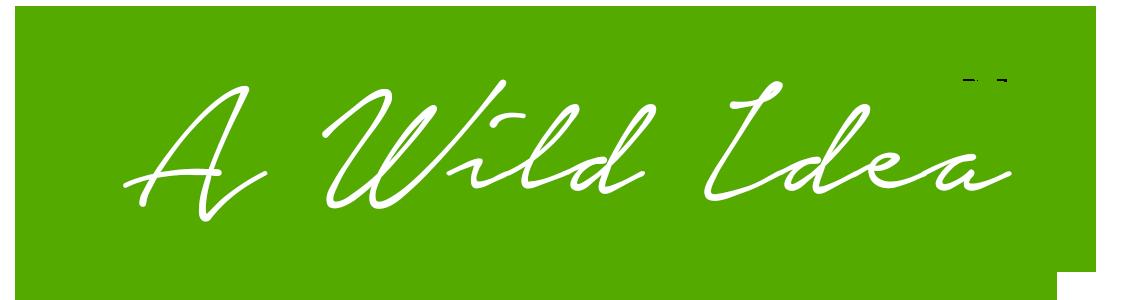 AWildIdea-V2Artboard-1.png