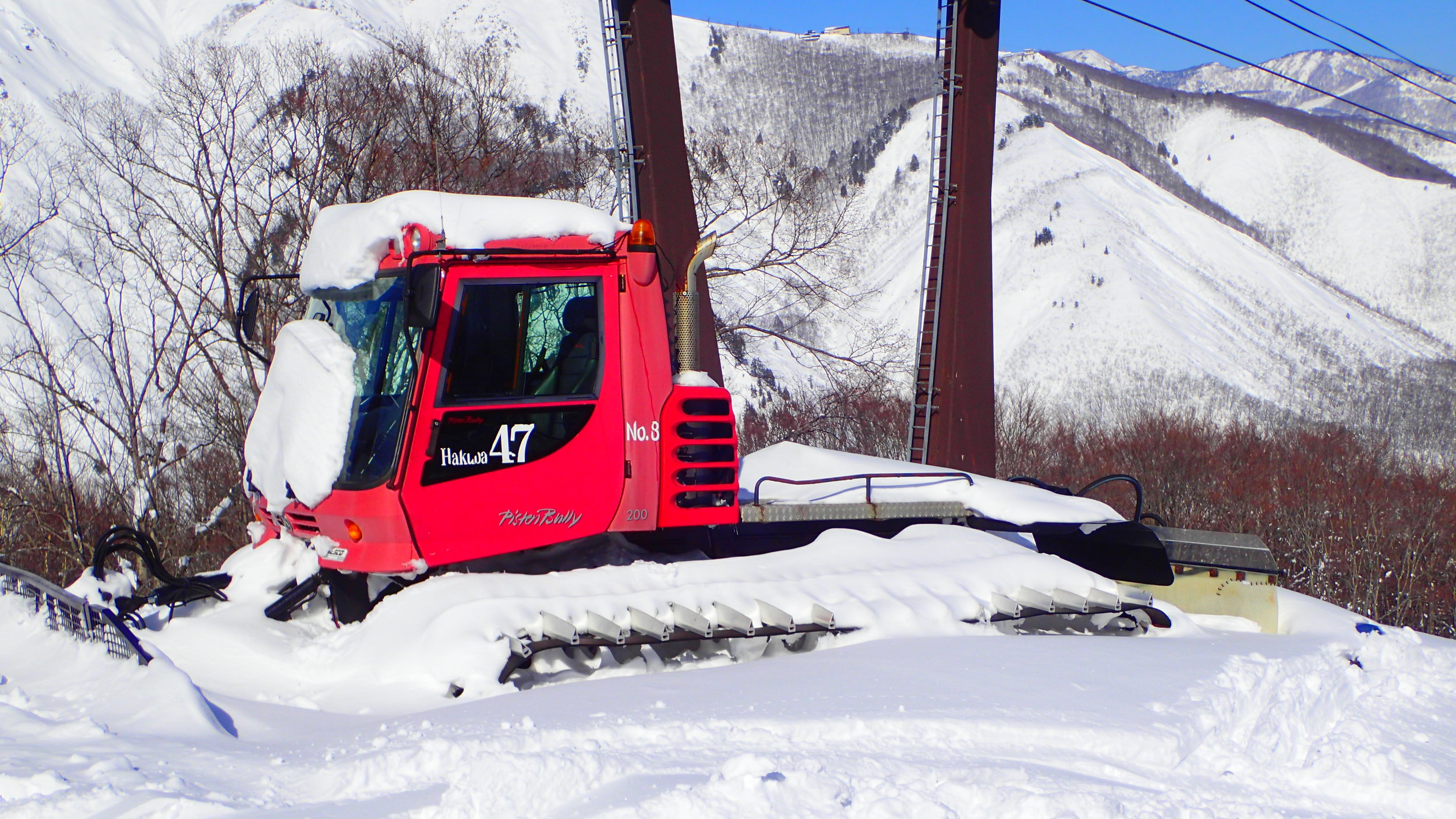 Snow Cat Hakuba 47.JPG