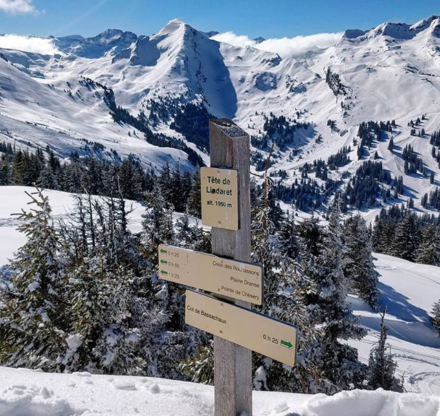 Follow the path, or get off the beaten track? Reminiscing about beautiful days hiking in Châtel. . . . #snowboarder #skier #snowboard #ski #skiing #bootpack #earnyourturns #splitboarding #splitboard #powturn #splitboardingistheanswer #backcountry #hike #bootpack #getoutdoors #powder #powderlap #portedusoleil #frenchalps #avoriaz #morzine #explore #offpiste #springsnow