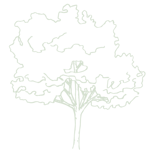 sagegardenservices_tree.png