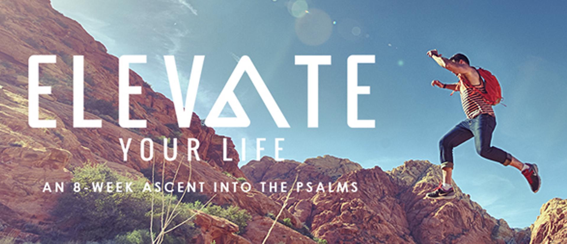 Website_Series_Header_Elevate_Your_Life.jpg